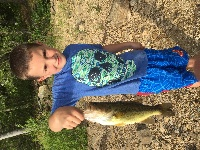 My 7 year old fishing with flukes